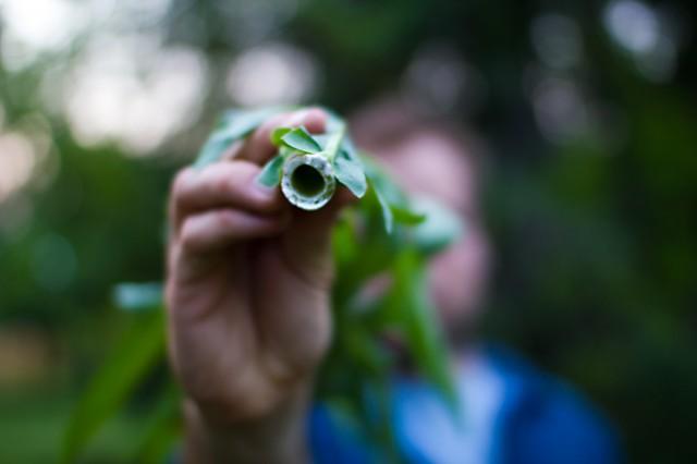 john dombroski shows me nature stuffs