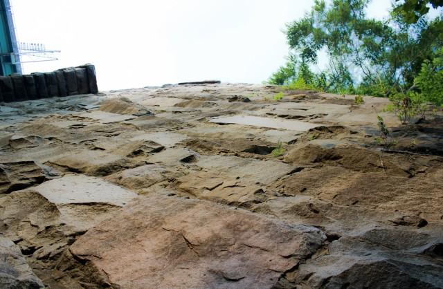 rackmount rooftop caravan lizard face seat