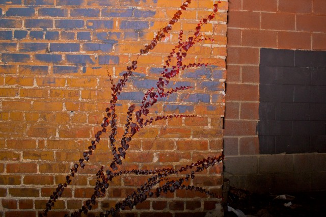 brick wall askew